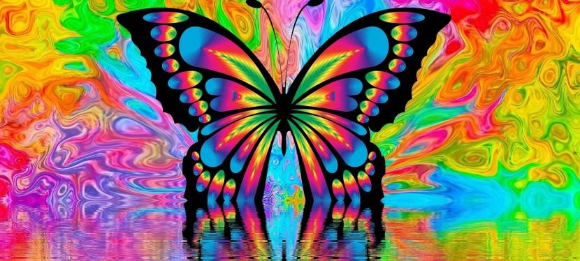 1000 bunte Schmetterlinge