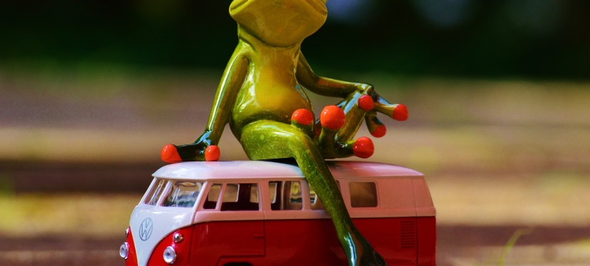Meine Tricks im Alltag: Nr. 3 – Wer fährt denBus?